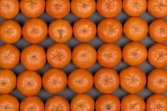 Arancia fresca, frutta del mandarino, modello del mandarino, vista superiore su un fondo nero dell'ardesia, fine su Immagine Stock