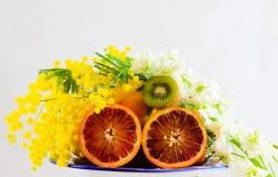 Arancia, kiwi e mimose Fotografia Stock