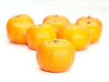 Arancia, mandarino, citrus sinensis Immagine Stock Libera da Diritti