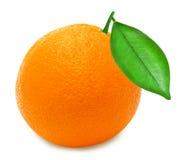 Arancia matura su un fondo bianco isolato Fotografia Stock Libera da Diritti