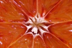 Arancia sanguigna Fotografie Stock