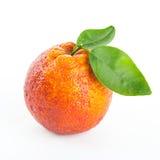 Arancia sanguigna rosso sangue con le foglie verdi Fotografia Stock