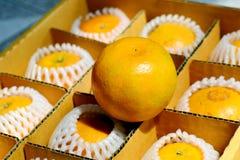 arancia in scatola Fotografie Stock