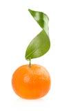 Arancia su fondo bianco Immagine Stock