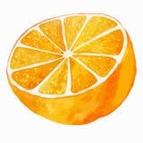 Arancia succosa su fondo bianco royalty illustrazione gratis