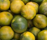 Arancia verde Immagini Stock