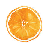 Arancio Fotografie Stock
