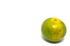 Arancio immagine stock libera da diritti