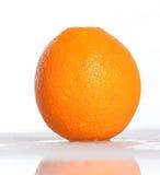 Arancio californiano Fotografia Stock