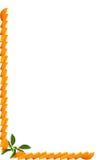 Arancio che fa un bordo Immagini Stock Libere da Diritti