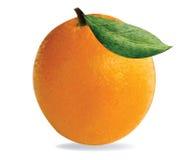 Arancio con i fogli su priorità bassa bianca Fotografie Stock Libere da Diritti