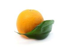 Arancio con il foglio Immagine Stock
