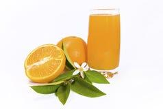 Arancio con spremuta Fotografia Stock Libera da Diritti