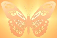 Arancio della priorità bassa della farfalla Immagini Stock Libere da Diritti