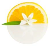 Arancio e fiore Immagini Stock Libere da Diritti