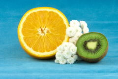 Arancio e kiwi Fotografia Stock