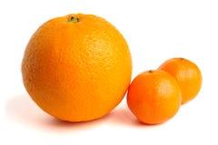 Arancio e mandarini Fotografia Stock