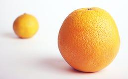 Arancio e mandarino Fotografie Stock