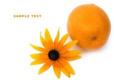 Arancio e un fiore Immagini Stock Libere da Diritti