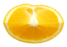 Arancio fresco Immagini Stock