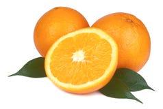 Arancio fresco isolato Immagine Stock Libera da Diritti