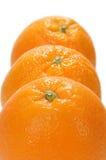 Arancio fresco tre Fotografia Stock Libera da Diritti