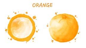 Arancio Illustrazione dell'acquerello Fotografia Stock