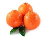 Arancio isolato Fotografia Stock