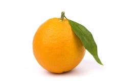 Arancio isolato Fotografia Stock Libera da Diritti