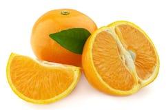 Arancio maturo Fotografia Stock Libera da Diritti
