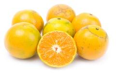Arancio maturo del mandarino Fotografie Stock