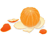 Arancio sbucciato Fotografie Stock