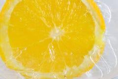 Arancio su ghiaccio Fotografia Stock Libera da Diritti
