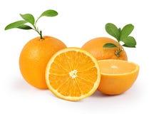 Arancio su priorità bassa bianca Fotografia Stock Libera da Diritti