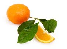 Arancio sugoso Fotografia Stock Libera da Diritti