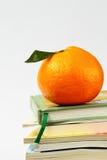Arancio sui libri isolati Fotografia Stock