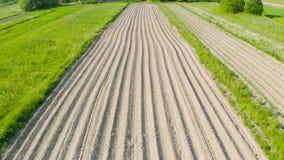 Arando sulco da terra para plantar plantas agronômicas entre o campo de árvores da grama e dos prados, vista aérea de cima de video estoque