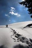 Arando throu la nieve Imagen de archivo libre de regalías