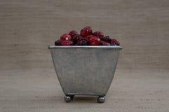 Arandos em Tin Footed Container Imagens de Stock Royalty Free