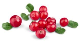 Arandos maduros vermelhos isolados no branco Imagens de Stock Royalty Free