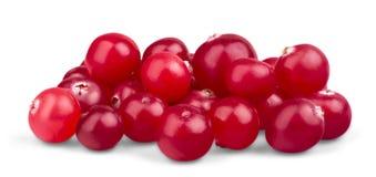 Arandos maduros vermelhos isolados no branco Fotografia de Stock