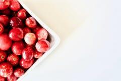 Arandos vermelhos saborosos e saudáveis Fotos de Stock Royalty Free