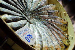 Arangades at market. Close-up of circular displayed arangades or herring at a market in Spain with price tag Royalty Free Stock Photos