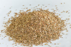 Arangement dill seed on white plate Royalty Free Stock Image