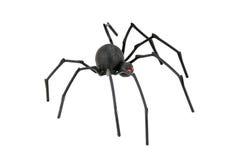 Aranha da viúva preta Fotos de Stock Royalty Free