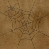 Aranha e Web Fotografia de Stock Royalty Free