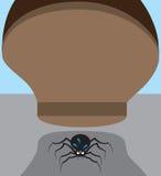 Aranha no perigo Fotografia de Stock