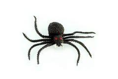 Aranha preta imagens de stock