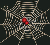 Aranha vermelha na Web Imagens de Stock