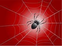 A aranha wed sobre ilustração royalty free